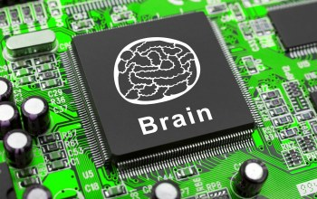 brain,electronic,Circuits