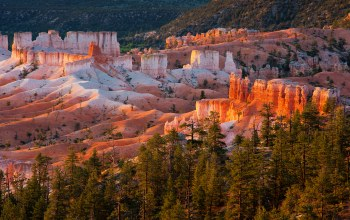 юта,Bryce canyon national park,сша,скалы