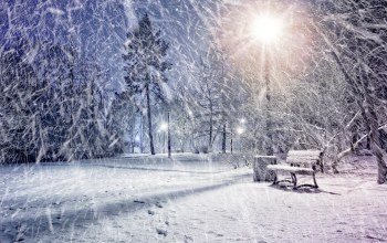 park,lights,snow,winter