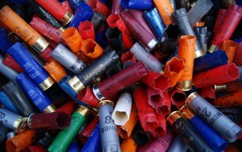 Shotgun shells,used,colors