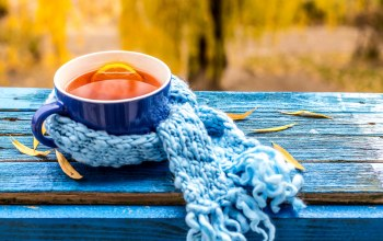 scarf,cup,maple,осенние листья,autumn,осень,leaves,fall,tea