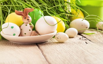 Easter,decoration,яйца,цветы,happy,spring,eggs