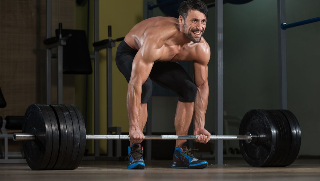 workout,weight,muscles,weightlifting