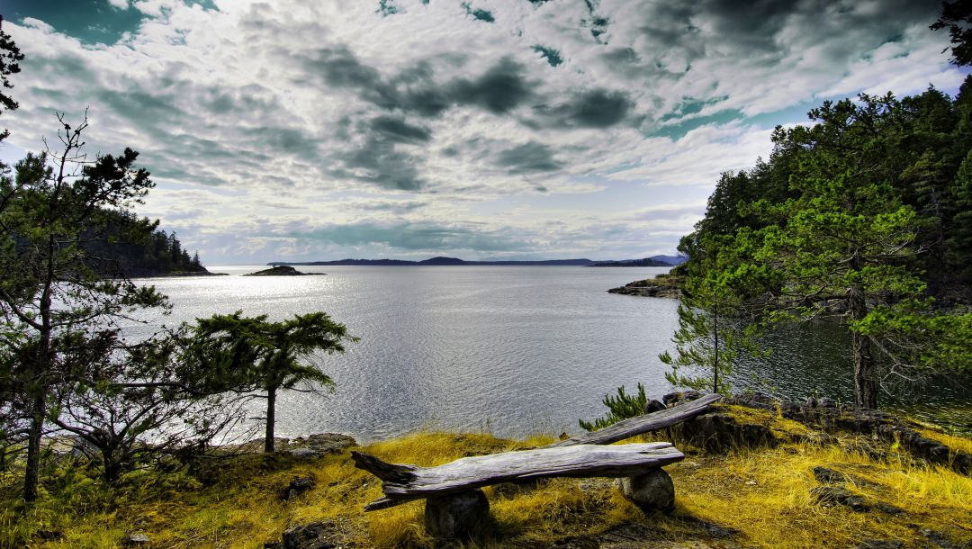 view,sky,river,forest,park,bench,water,trees,clouds,mountains