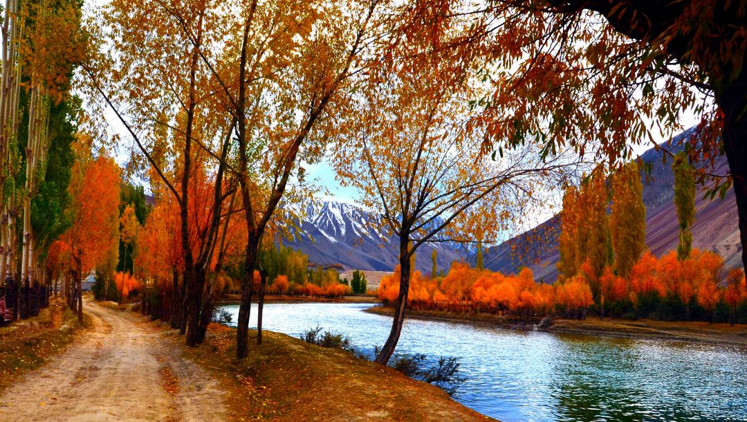 walk,trees,river,autumn,leaves,sky,colors,forest,park,colorful,fall,water