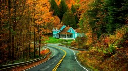 colorful,forest,leaves,Road,trees,autumn,house,grass,walk,park,colors,fall,path,nature