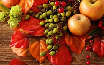 fruit,berries,натюрморт,still life,яблоки,harvest,leaves,Apples,autumn