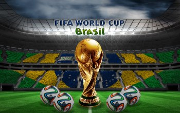 flag,stadium,football,golden trophy,Brasil,Ball,brazuca