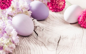 happy,яйца,eggs,Easter,decoration,цветы,spring,Весна