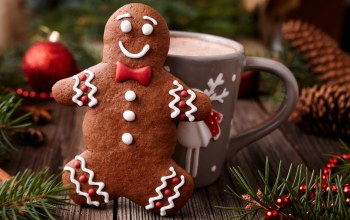 decoration,cookies,рождество,xmas,christmas,gingerbread,Merry