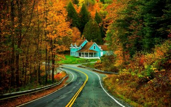 colorful,forest,leaves,Road,trees,autumn,house,grass,walk,park,colors,fall,path