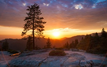 Sunset,sierra nevada,mountain,tree,Beetle rock