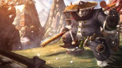 палка,warcraft,World of warcraft: mists of pandaria,Медведь,art,Панда