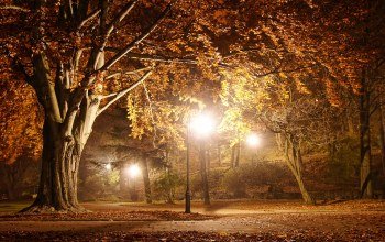 Road,beautiful scene,street,Romantic evening,landscape,park,Autumn trees,Road