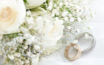 wedding rings,обручальные кольца,цветы,ткань,cloth