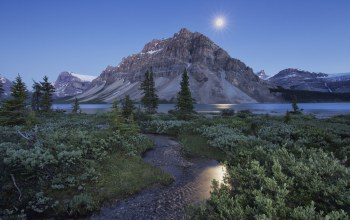 alberta,canada,crowfoot mountain,canadian rockies,bow lake