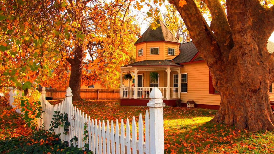 colorful,autumn,forest,house,walk,grass,trees,park,Road,leaves,fall,colors,path