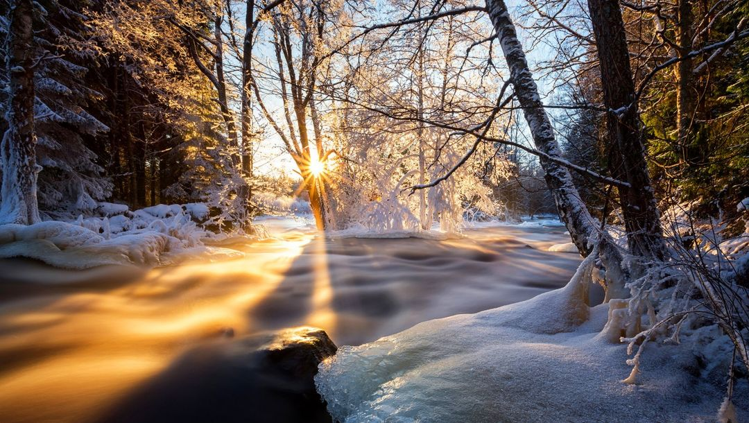 colors,snow,sky,Sunset,clouds,scenery,ice,tree,view,landscape,winter,season