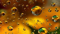 Abstract,Floral,background,bubbles,colors,colorful,абстракция,пузыри