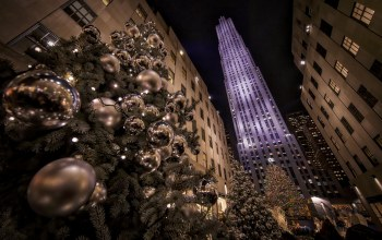 christmas tree,new york city,Rockefeller center