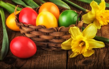 яйца,decoration,Весна,happy,spring,Easter,eggs,цветы