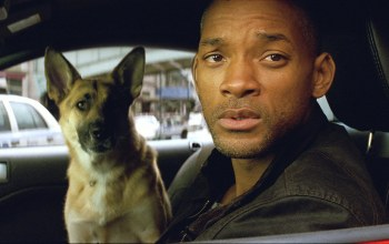 will smith,robert neville,abby,i am legend,уилл смит,Я – легенда,эбби