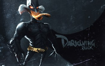 Dark knight,duck,darkwing,suit,mask