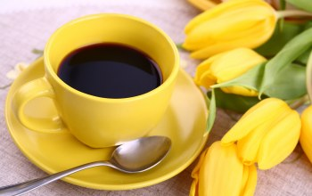 breakfast,yellow,цветы,кофе,coffee,tulips,cup