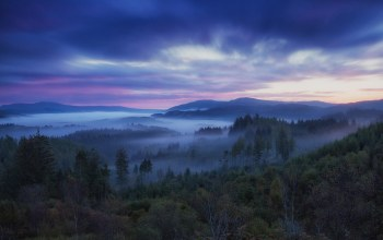trossachs,hills,fog,scotland,mist,forest,sunrise