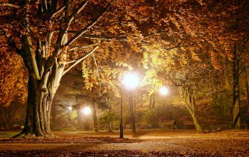 Пейзаж,fall season,осень,autumn,park,lights