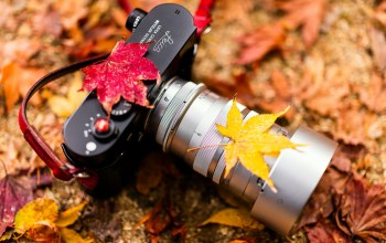 Autumn colors,camera,leica