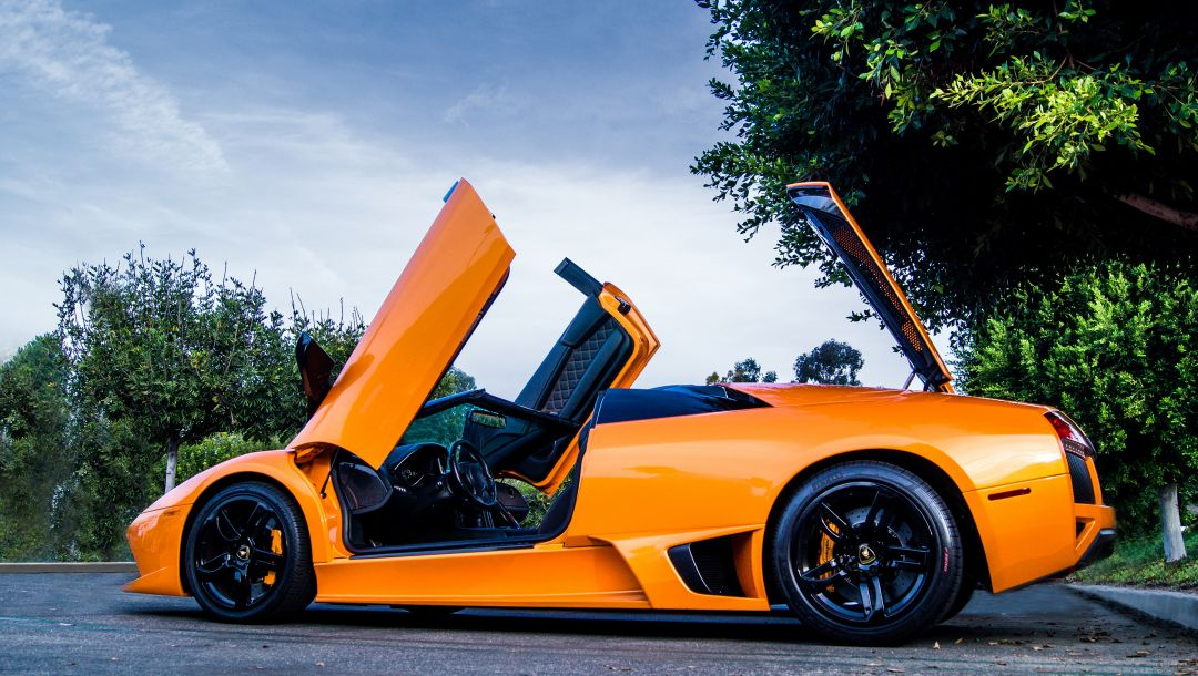 tree,мурселаго,Lamborghini,roadster,orange,lp640
