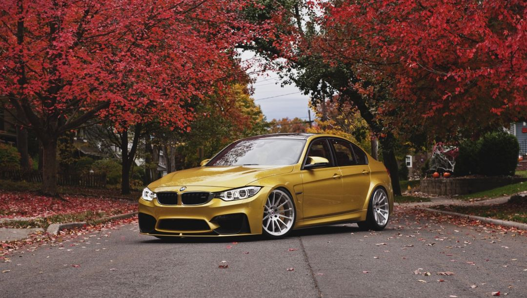 Bmw,M3,осень,autumn,Face,f80,wheels,angel eyes