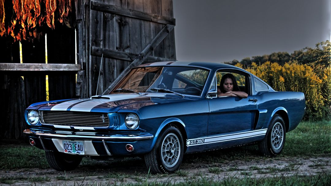 1966,gt350,shelby