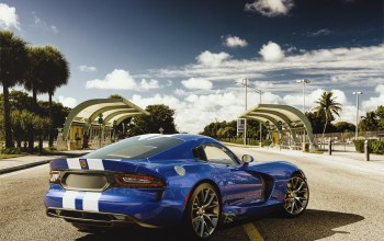dodge,viper,car,sport,blue,Road