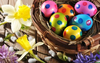 цветы,яйца,wood,spring,holiday,colorful,Easter,happy,eggs