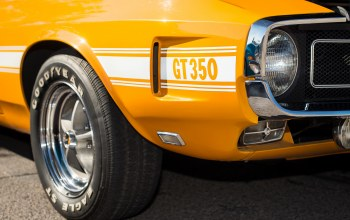 shelby,1969,gt350