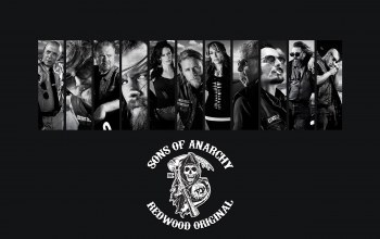 Мотоцикл,байкер,soa,Sons of anarchy,Мотоцикл