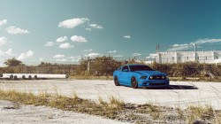 Front,5.0,car,blue,Ford,gt,sky,mustang,Muscle