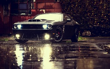 challenger,rain,Muscle,car,ligth,dodge