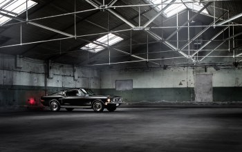 Muscle,classic,warehouse,car,fastback