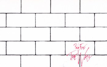 cover,the wall