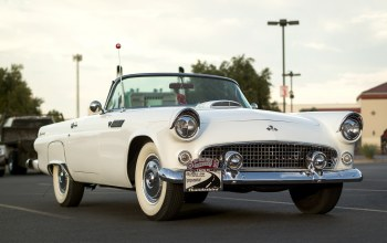 Thunderbird,1955,t-bird,передок