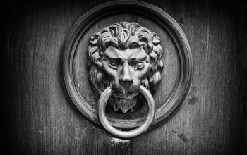 wood,Door knocker