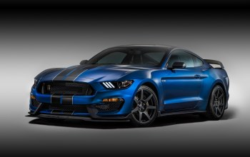 shelby,gt350r,форд