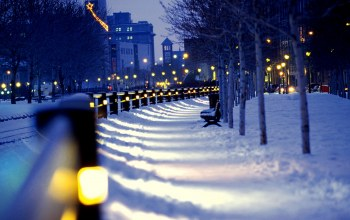benches,lights,winter,ночь,street,snow,улица