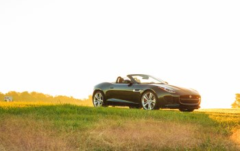 Jaguar,f-type,grass,v8 s,car,convertible,light,свет