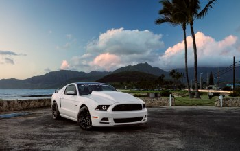 5.0,Muscle,White,Hawaii,car