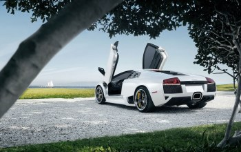 Lamborghini,trees,grass,rear,supercar,White,lp640-4,sky