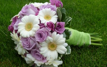 nice,cool,rose,lovely,flower,beautiful,gerberas,elegantly,Bouquet,roses,wedding